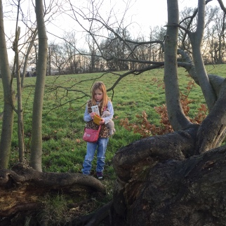 Wild Times at Kenwood House