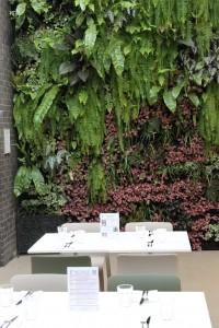Courtyard-Wall-200x300