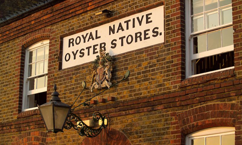 Royal Native oysters stores restaurant whistable kent