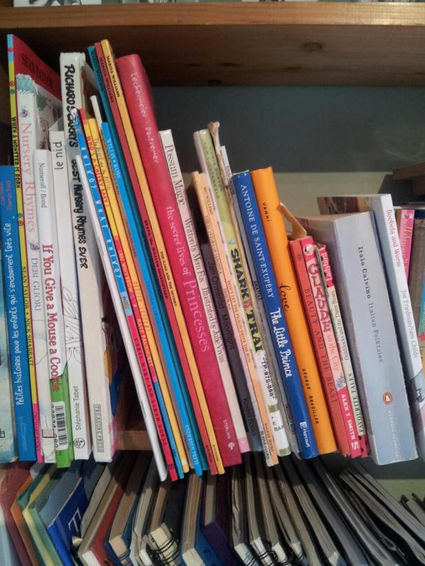 Picture 2 Books on my shelf