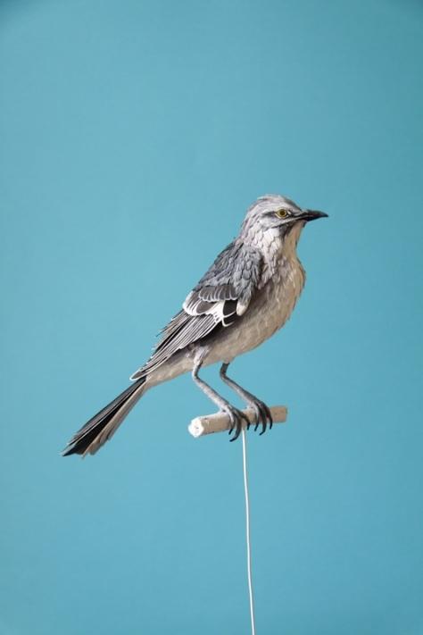 bird paper 2