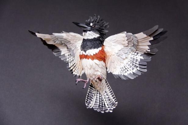 bird paper 3