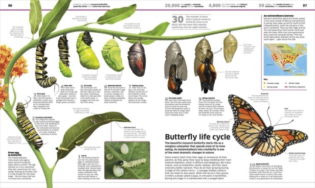 knowledge encyclopedia 2